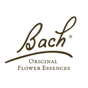 Dr Bachs